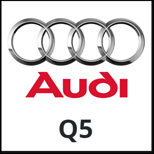 Website-logo-audiQ5.jpg